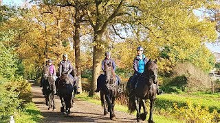 Paardensport Snertrit start en finish bij de  Alberthoeve Wateren Dr.