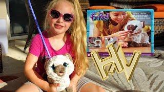 Новая игрушка для Никки. Интерактивный котёнок Ками, друг Пакса Furreal Friends Hasbro. Для детей