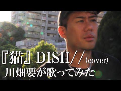 川畑要が【「猫」 DISH//】を歌ってみた