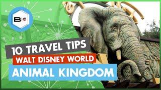 Скачать Top 10 Tips Visiting Disney S Animal Kingdom At Walt Disney World