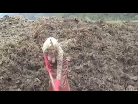 penisring anziehen buffalo 24400