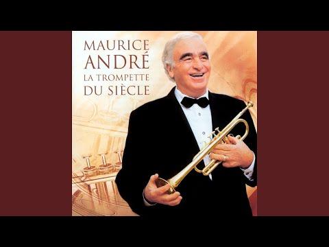 Oboe Concerto In D Major, HauH 5.3: I. Allegro (Arr. For Trumpet)