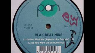 Blak Beat Niks - Do You Want Me (Instrumental)