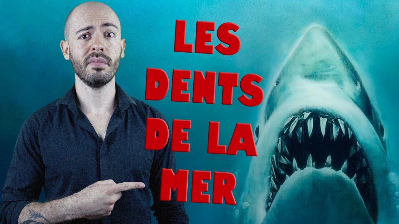 SO - Les Dents de la Mer (Rétrospective Jaws 1/4)