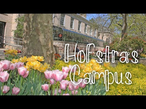 Hofstra University's Beautiful Campus