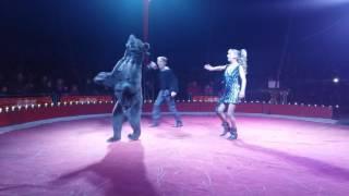 Цирк Олимп в Кременчуге! 20 октября 2016. Медведь на велосипеде(Номера свежей программы., 2016-10-26T12:10:55.000Z)