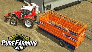 Sprzedaż świń - Pure Farming 2018 | #20
