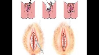Videos Hairy latina pussies fucking