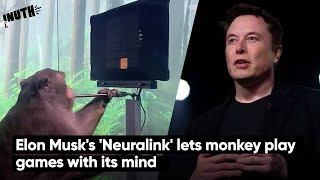 Elon Musk's 'Neuralink' lets monkey play games with its mind