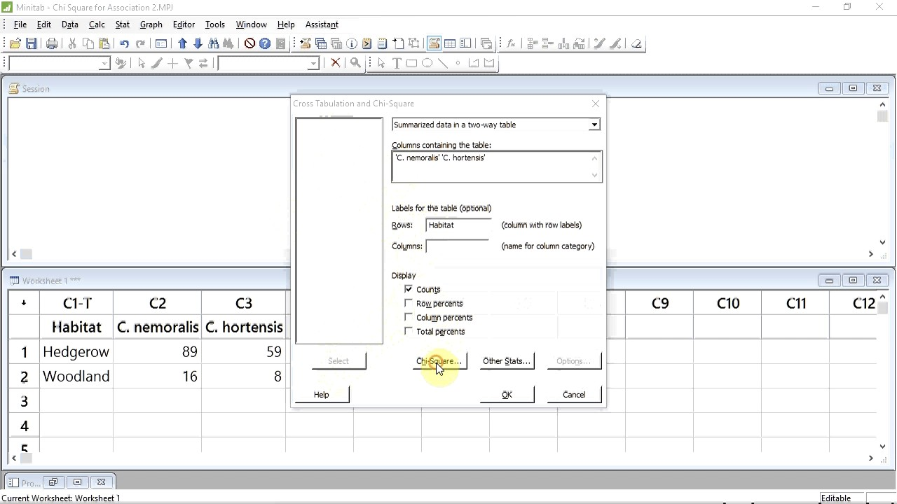 Chi-squared test for association with Minitab