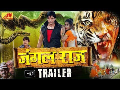 JUNGAL RAJ (New Official Trailer 2018) - Viraj Bhatt, Anjana Dobson- Bhojpuri Movie 2018