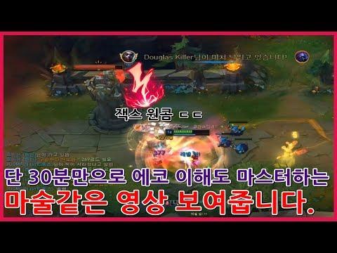 한국 에코 1위 단 30분만으로 에코이해도 마스터하는 마술같은영상 보여줍니다.