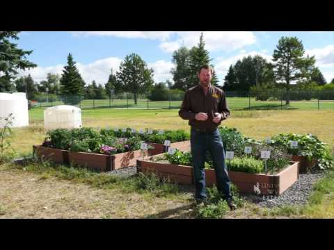 High Elevation Gardening Tips   From the Ground Up