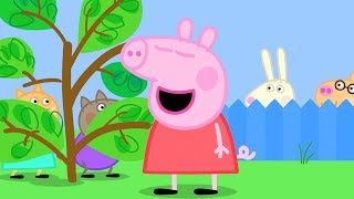 Peppa Pig English Episodes | Freddy Fox's SUPER Nose! | 1 HOUR Peppa Pig Official