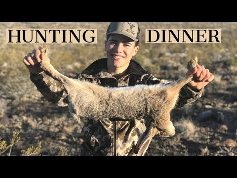 Rabbit Hunting Huge Jackrabbits! Outdoorsman Style Survival