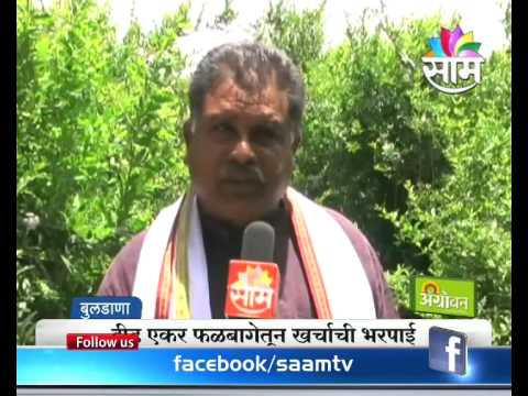 Farmer in India earning 70 lakhs profit in a year : Don't miss this success  story