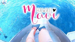 Hawaii Travel Diary   Maui 2016
