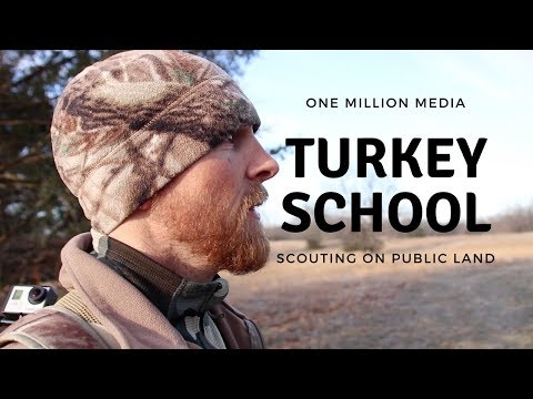 Scouting Turkeys On Public Land - Episode 4