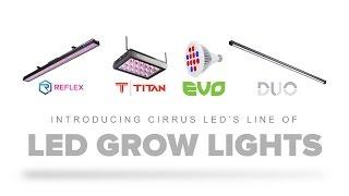 Introducing Cirrus LED Grow Lights