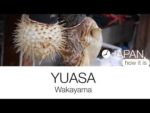 Japan How It Is - Yuasa, Wakayama.