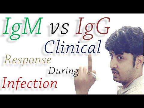 Immune Response IgM vs