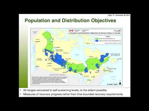 Environment Canada's Boreal Caribou Recovery Plan, PTAC Forum, Nov. 2012