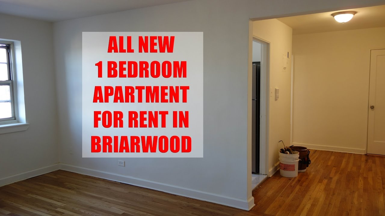 All new 1 bedroom apartment for rent in Briarwood, Queens ...