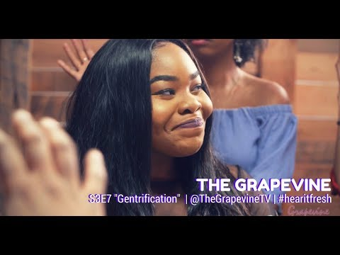 THE GRAPEVINE | GENTRIFICATION | S3EP7 (1/2)