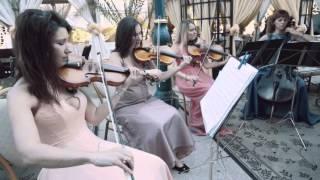 классическое оформление свадьбы Одесса, свадьба в белом цвете