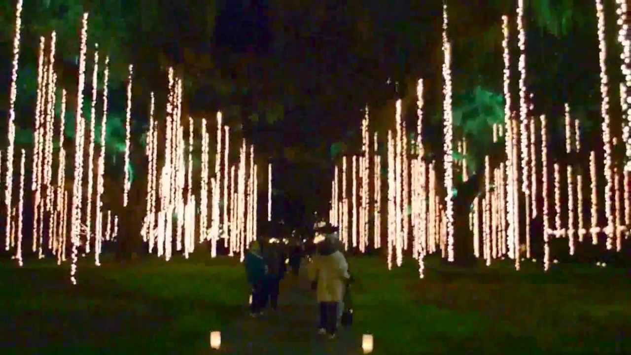 Brookgreen Gardens Nights Of A Thousand Candles 3 Youtube