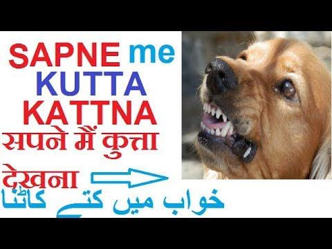 Sapne Mai Kutta Dekhnaसपने मैं कुत्ता देखना..ke Mayene