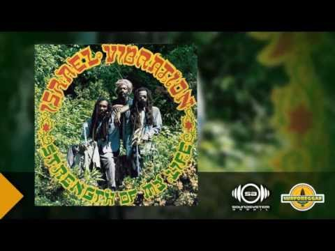 Israel Vibration - Greedy Dog
