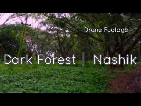 Фото Dark Forest   FPV   DJI Mini 2   Nashik   Sula Vineyards