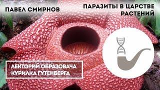 Павел Смирнов - Паразиты в царстве растений