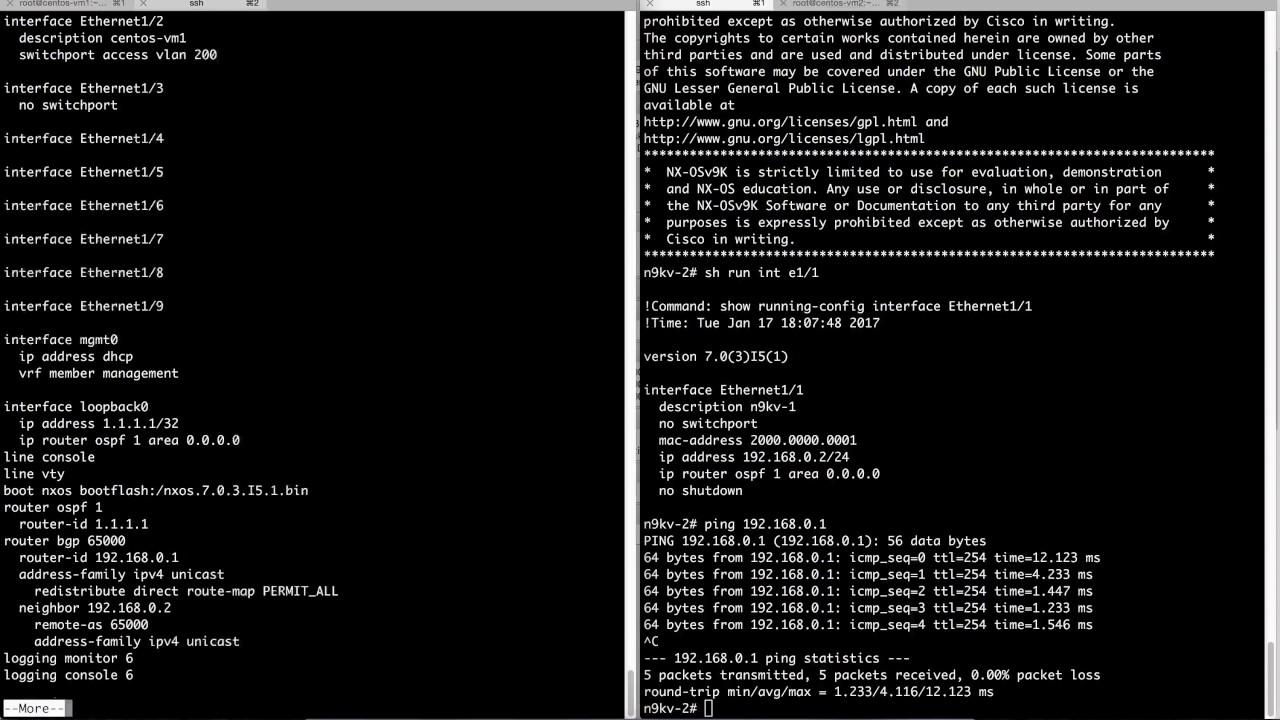 Cisco Nexus 9000v VXLAN on VirtualBox