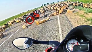 The most UNEXPECTED RIDE   Crazy and Epic Motorcycle Moments   Ep.223
