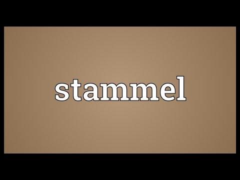 Header of stammel