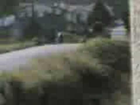 corrida de xf-17 vermelhinha (pilao) e xf-17 dourada merciano.