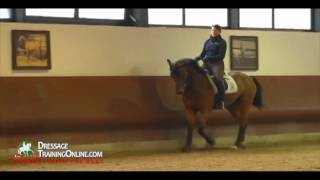 Dr. Ulf Moller training the young horse dressage basics