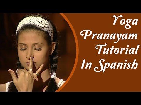 Yoga Pranayama Asanas | Tipos, pose y Posturas | Tutorial Yoga En Español