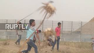 State of Palestine: Sixteen injured at Gaza 'March of Return' protest - HealthMin