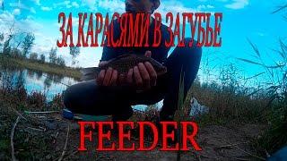 Фидерная рыбалка в Загубье. Караси.