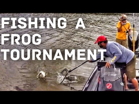 Topwater Bass Fishing - The Spro Frog Only Tournament