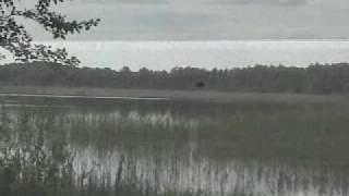 Шацькі озера перлини Волині