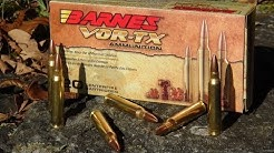 AMMO REVIEW:  .223 Barnes VOR-TX 55 gr TSX (Copper)