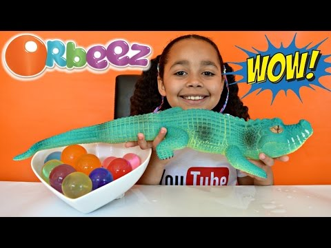 GIANT MAGIC ORBEEZ! GIANT GROWING WATER CROCODILE! Kids Science Review