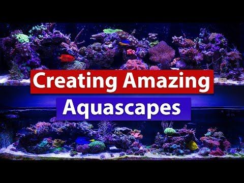 Creating Amazing Aquascapes - Tips and tricks to building that stunning saltwater reef scape!