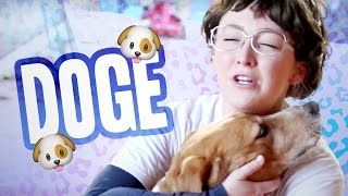 ATTACKED BY DOGS?! (w/ Deb the Dog Lady)