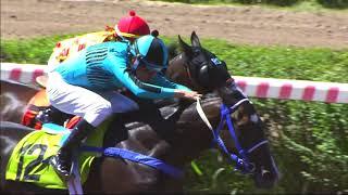 Vidéo de la course PMU PREMIO FANGUITO