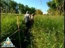 massasauga-rattlesnake-research